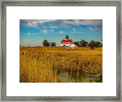 Framed Print featuring the photograph Wetlands At East Point Light by Nick Zelinsky