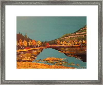 Wetlands In Autumn Framed Print
