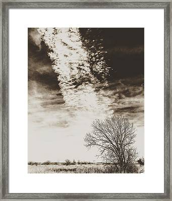 Wetlands Meet Chemtrails Framed Print
