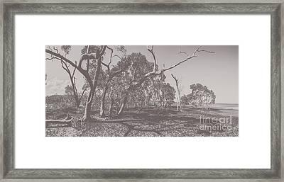 Wetlands Of Old Framed Print