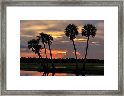 Wetlands Sunset Framed Print