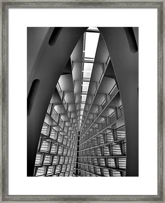Whale Bones Framed Print by Steven Ainsworth