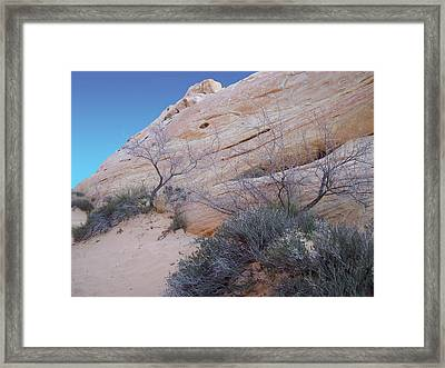 Whale Rock Framed Print