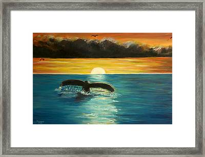 Whale Tail At Sunset  Framed Print