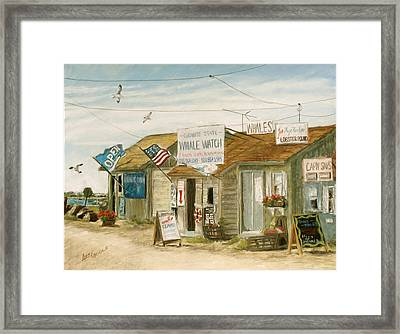 Whale Watch Framed Print by Ann Caudle