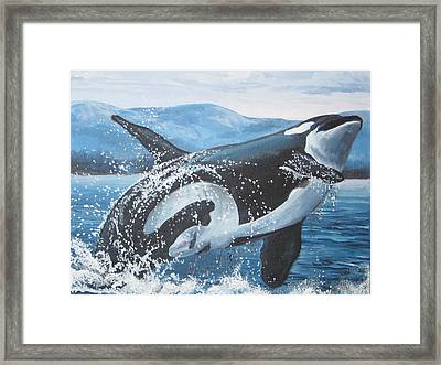 Whale Watching Framed Print by May Moore