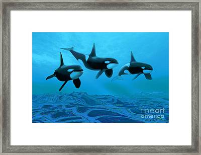 Whale World Framed Print by Corey Ford