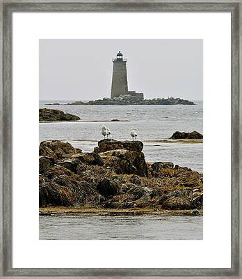 Whaleback Lighhouse From Fort Constitution Framed Print by Rick Frost
