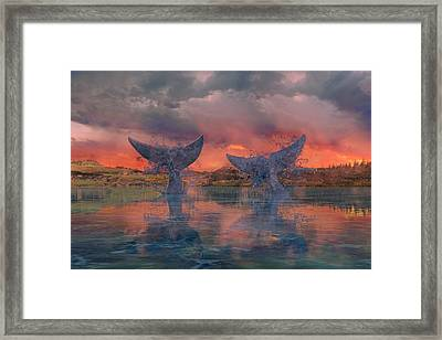 Whales Framed Print by Betsy Knapp