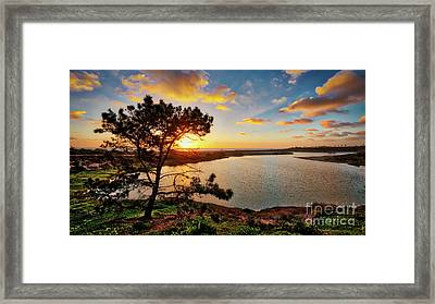 What A Glow At The Batiquitos Lagoon Framed Print