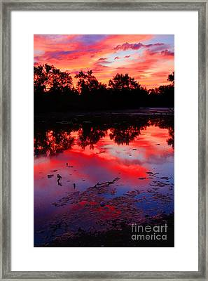 What A Morning Framed Print by Robert Pearson