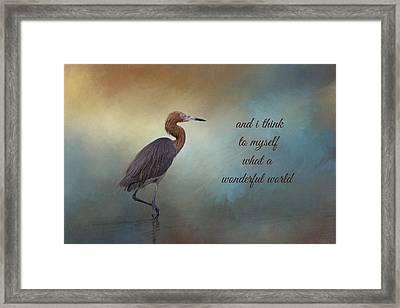 What A Wonderful World Framed Print by Kim Hojnacki