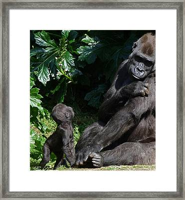 What Are You Doing Mother Framed Print by Margaret Saheed