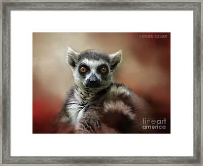 What Big Eyes You Have Framed Print