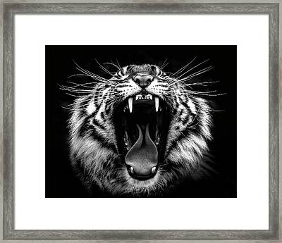 What Big Teeth You Have Framed Print by Wes and Dotty Weber
