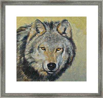 Heres Lookn At You..kid....kid....kid Framed Print