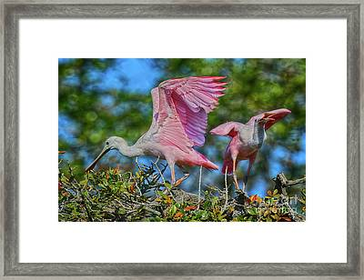 What Did You Say Framed Print