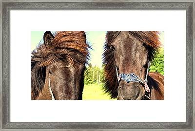 What Friends Are For You And Me  Framed Print