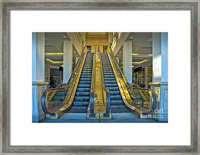 What Goes Up Must Come Down Framed Print by David Zanzinger