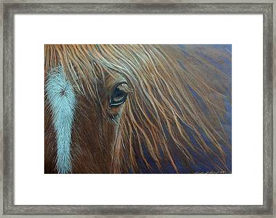 What He Can See Framed Print
