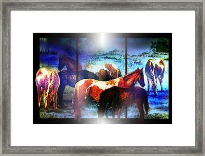 What  Horses Dream Framed Print by Hartmut Jager