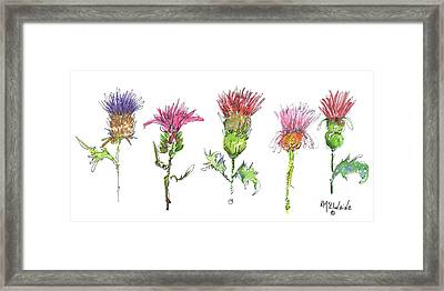 What Is It About A Thistle Fl006 Framed Print
