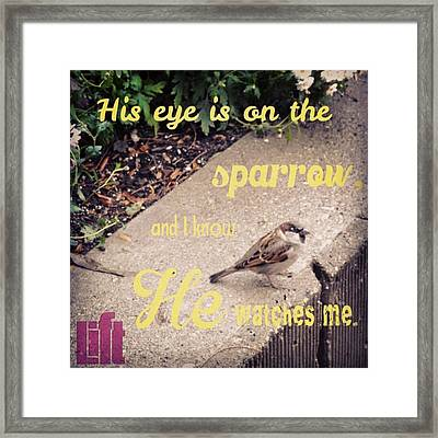 What Is The Price Of Two Sparrows-one Framed Print