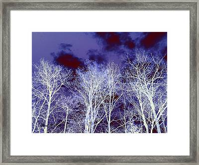 Framed Print featuring the photograph What Lies Above by Shana Rowe Jackson