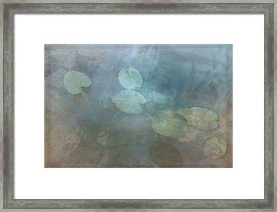 What Lies Beneath Framed Print by Jim Cook