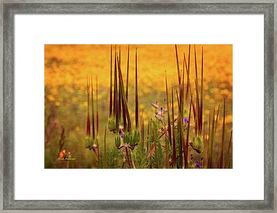 What Some Call Weeds Framed Print