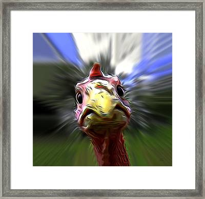 What The Duck Paulie Framed Print