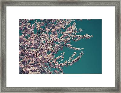 What This New Life Will Bring Framed Print by Laurie Search