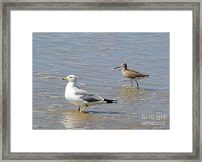 Outer Banks Obx Framed Print