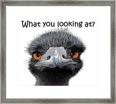 What You Looking At? Framed Print