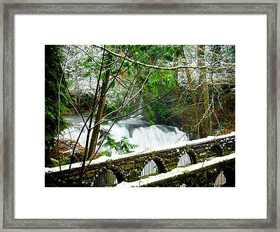 Whatcom Falls 3 Framed Print by Craig Perry-Ollila