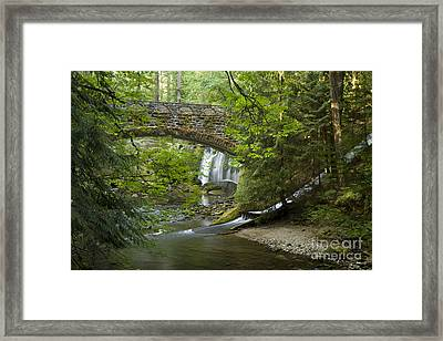 Whatcom Falls Bridge Framed Print