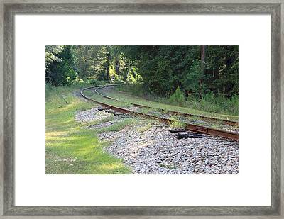 Whats Around The Bend Framed Print by Suzanne Gaff