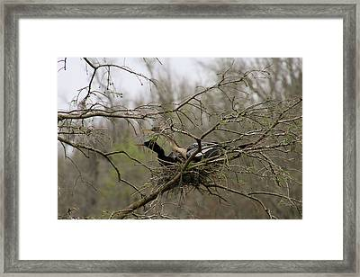 What's Going On There Framed Print
