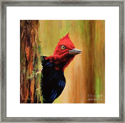 Whats Up? Framed Print by Igor Postash