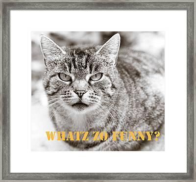 Whatz Zo Funny Framed Print by Frank Tschakert