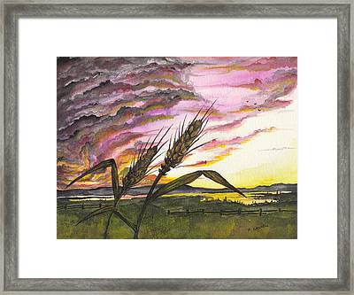 Framed Print featuring the painting Wheat Field by Darren Cannell