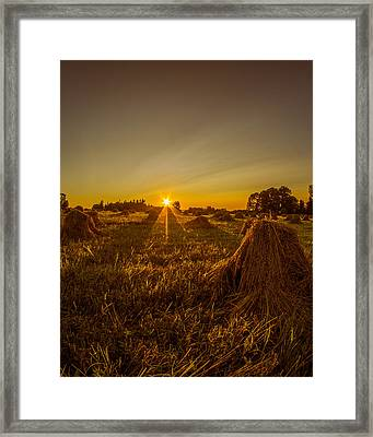 Framed Print featuring the photograph Wheat Shocks by Chris Bordeleau