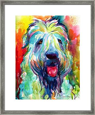 Wheaten Terrier Dog Portrait Framed Print by Svetlana Novikova