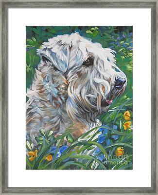 Wheaten Terrier Framed Print
