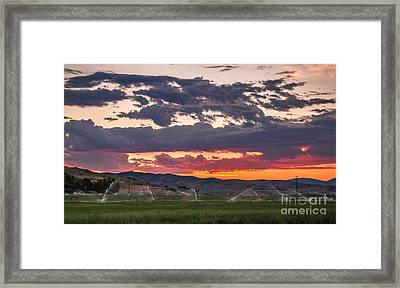 Wheel Line Sunrise Framed Print by Robert Bales