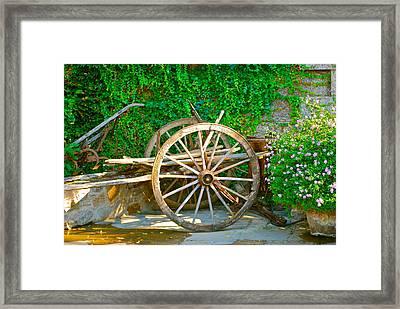 Wheel Of Happiness Framed Print by Dorota Nowak