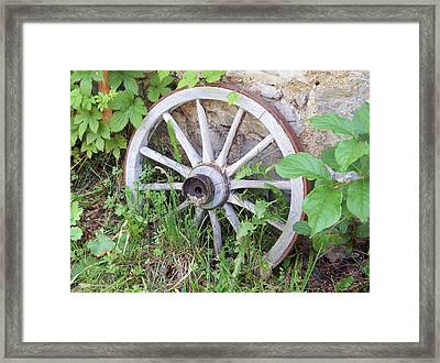 Wheel Walk Framed Print by Patrick Murphy