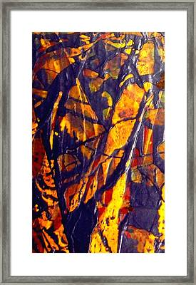 When A Tree Falls Alone In A Forest 1 Framed Print by Bruce Combs - REACH BEYOND