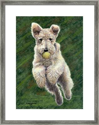 When Dogs Fly Framed Print