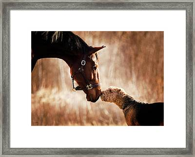 When First They Met Framed Print by Christina Conway